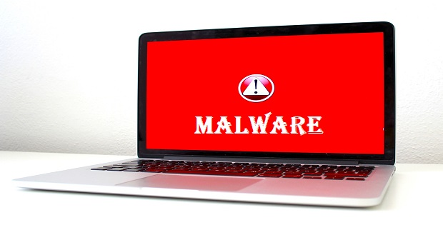 Malware definition and example of various malware