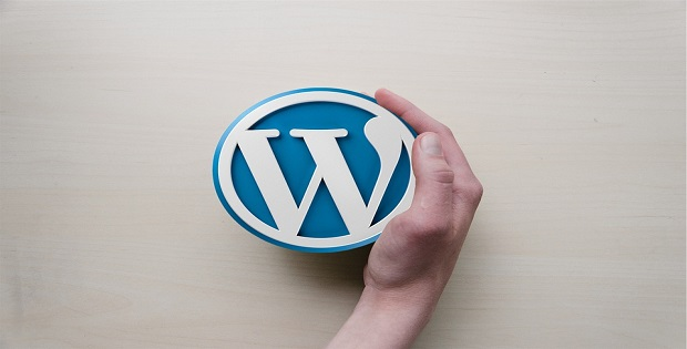 WordPress CMS is the best for website design.